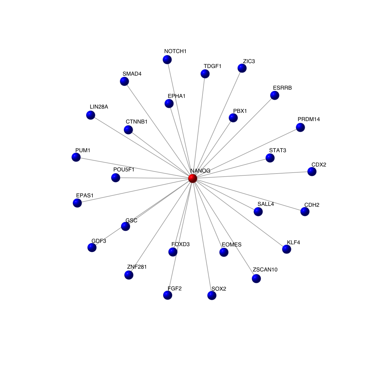 How to extract a subnetwork that revolves around a specific
